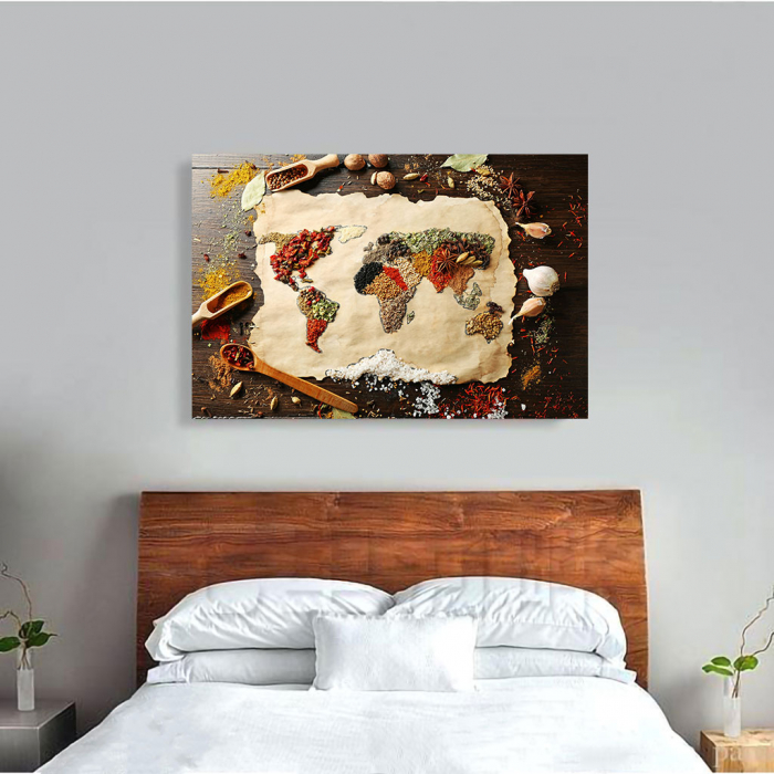 Tablou Canvas - Spices world map [2]