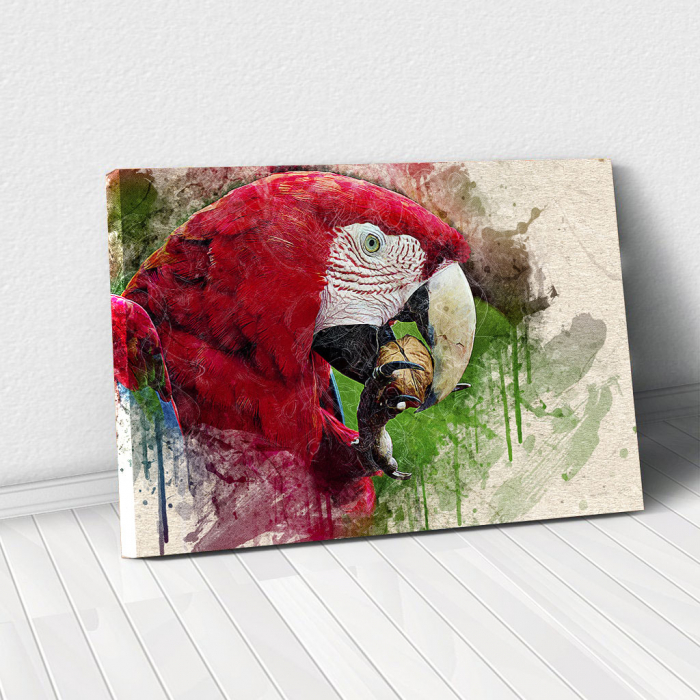 Tablou Canvas - Wild Parrot 0