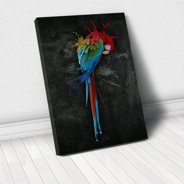 Tablou Canvas - Parrot 0
