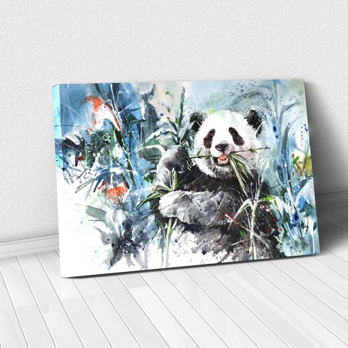 Tablou Canvas - Panda 0