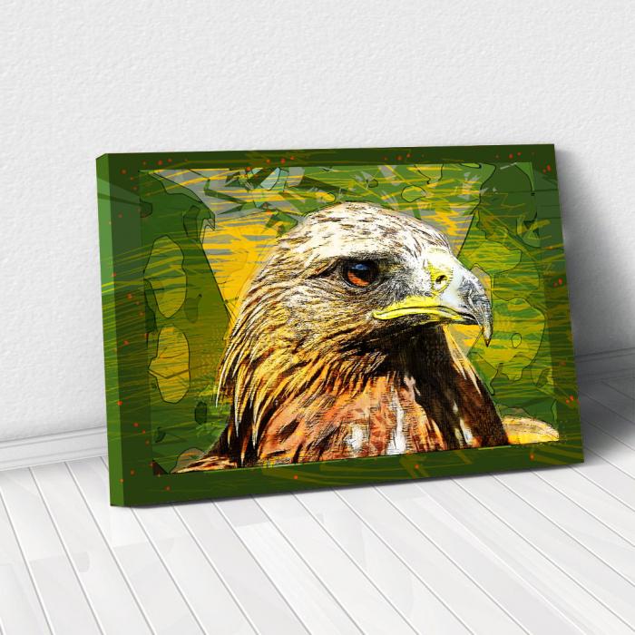 Tablou Canvas - Vultur cromatic 0