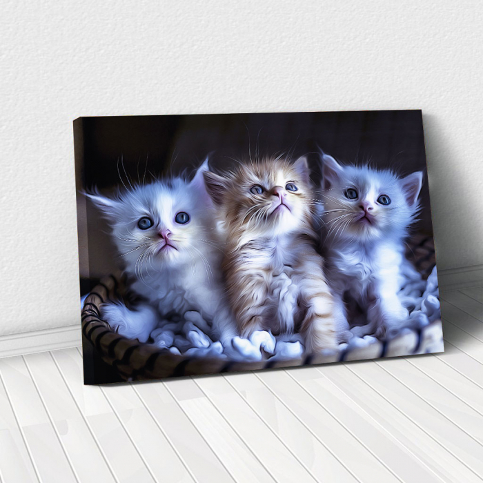 Tablou Canvas -  Pisicei arta digitala 0