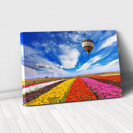 Tablou Canvas - Flowers field0