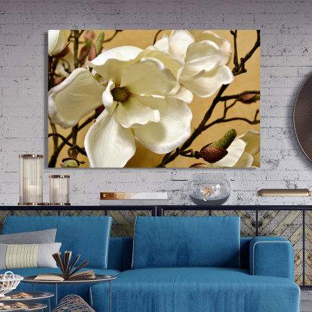 Tablou Canvas - Floare alba2