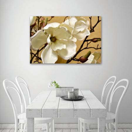 Tablou Canvas - Floare alba4