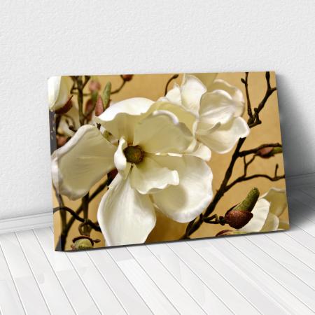 Tablou Canvas - Floare alba0