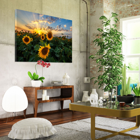 Tablou Canvas - Apus peste Floarea Soarelui1