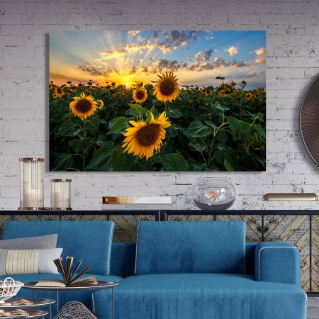 Tablou Canvas - Apus peste Floarea Soarelui2