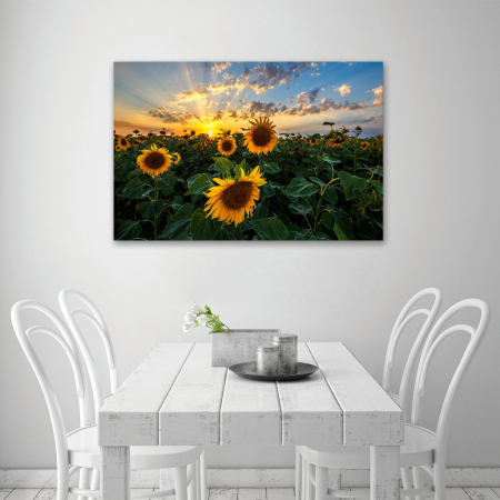 Tablou Canvas - Apus peste Floarea Soarelui4