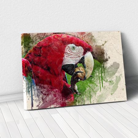 Tablou Canvas - Wild Parrot0