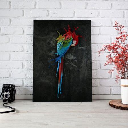 Tablou Canvas - Parrot3