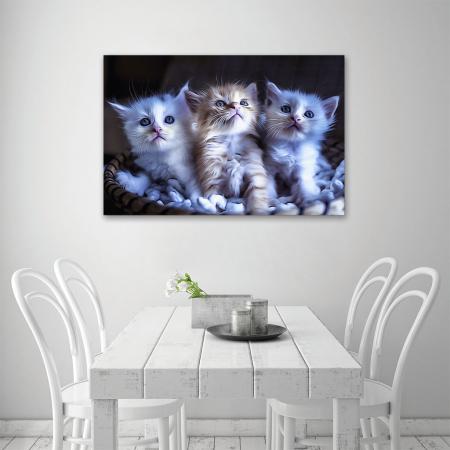 Tablou Canvas -  Pisicei arta digitala [3]