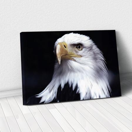 Tablou Canvas - Acvila americana [0]