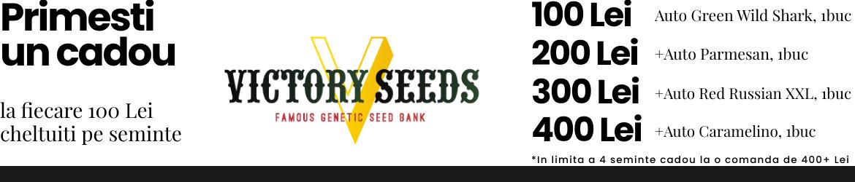 Promo Seeds
