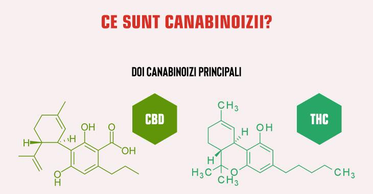 Ce sunt canabinoizii?