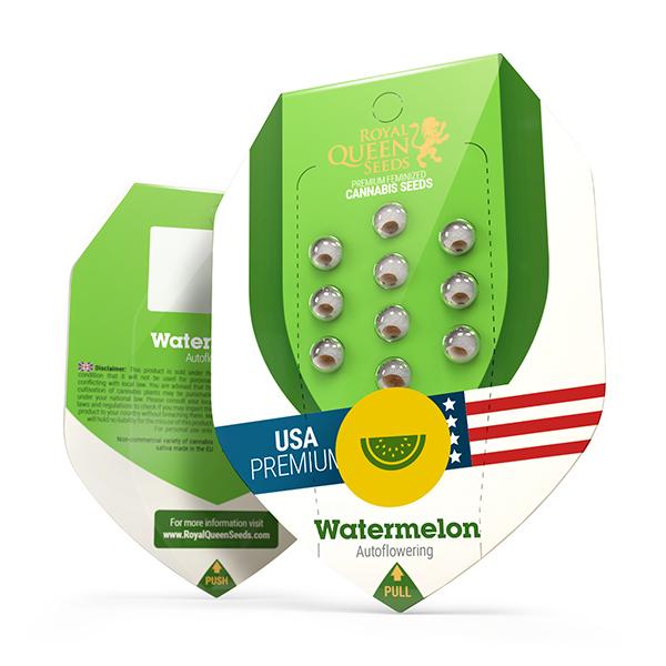 Seminte Cannabis Auto Watermelon USA Feminized, 5 seminte [0]