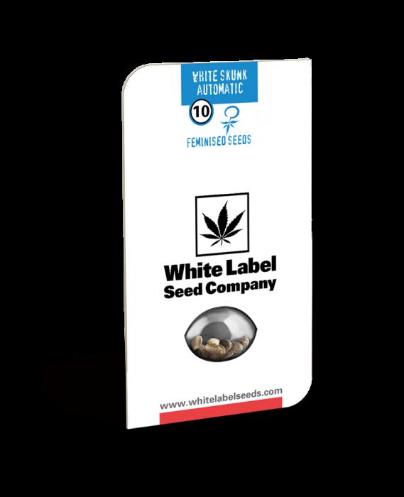 Seminte Cannabis Auto White Skunk Feminized, 5 seminte [0]
