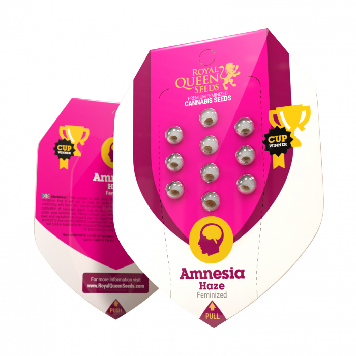Amnesia Haze Feminized, 5 seminte 0
