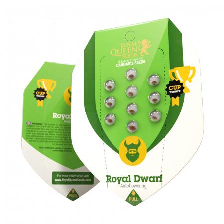 Auto Royal Dwarf Feminized, 5 seminte