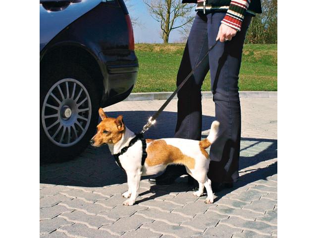 Trixie Ham si Centura Auto S 30-60 cm 1290 [1]
