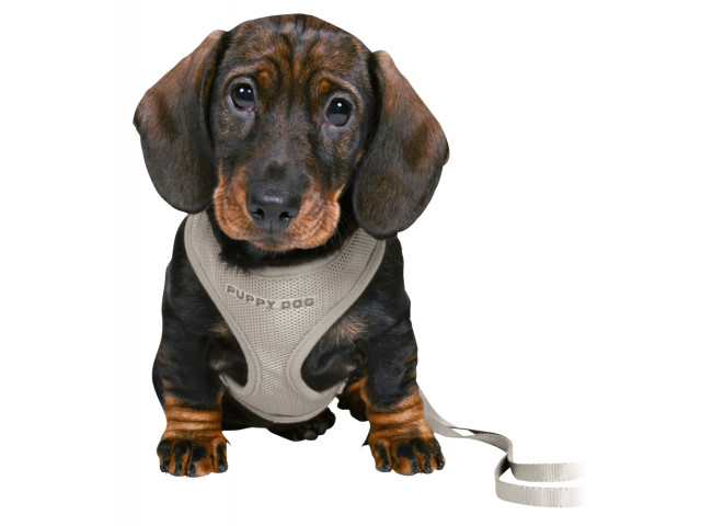 Trixie Ham + Lesa Junior Puppy soft 26-34 cm/10 mm gri 15560 [1]