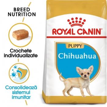 Royal Canin Chihuahua Puppy [0]