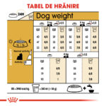 Royal Canin Yorkshire Terrier Adult [1]