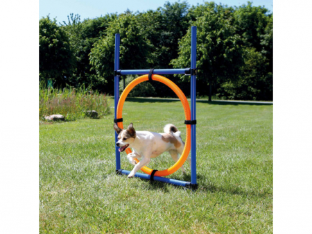 Trixie Jucarie Agility Ring 65 cm 3208 [1]