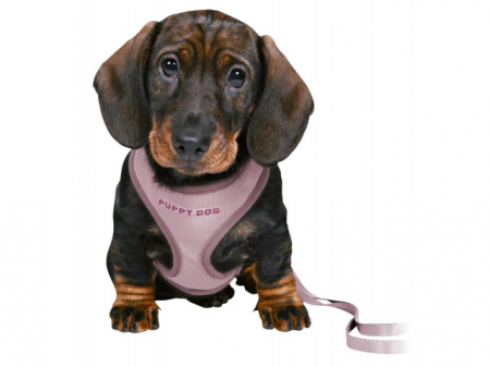 Trixie Ham + Lesa Junior Puppy Soft 26-34 cm/10 mm lila 15564 [1]