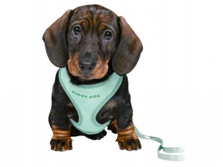 Trixie Ham + lesa Junior Puppy soft 26-34 cm/10 mm verde 15565 [1]