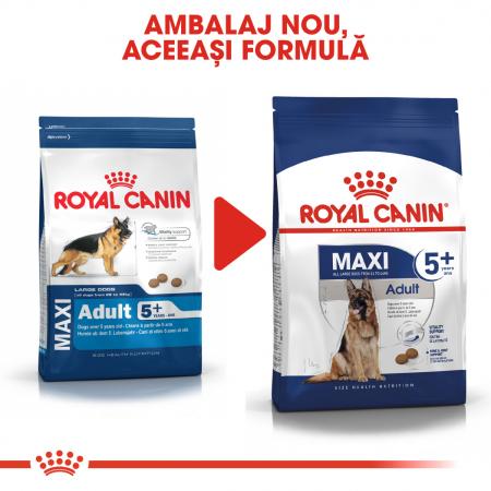 Royal Canin Maxi Adult 5+ [3]