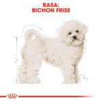 Royal Canin Bichon Frise Adult [1]