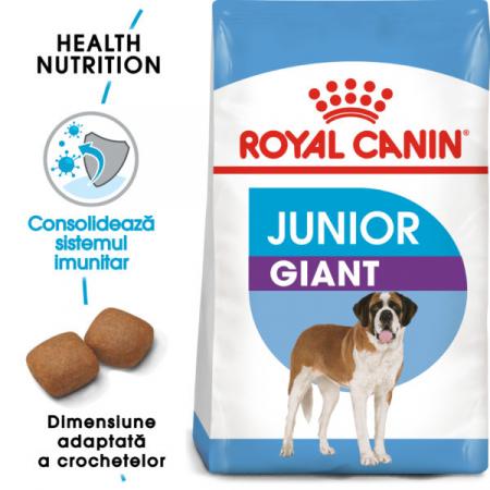 Royal Canin Giant Junior [0]