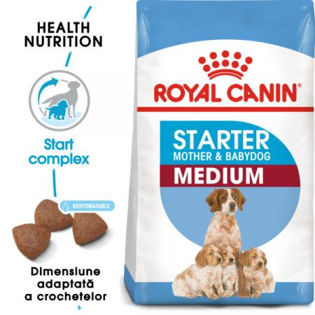 Medium Starter Mother & Babydog [0]