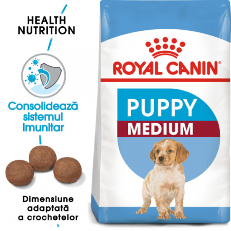 Medium Puppy [0]