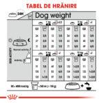 Royal Canin Mini Dermacomfort [3]