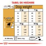 Pug Adult 1.5kg [1]