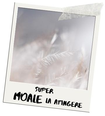 Super Moale