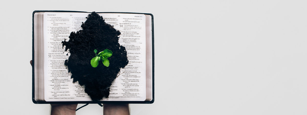Proverbe 4.13 - Scurtă explicație