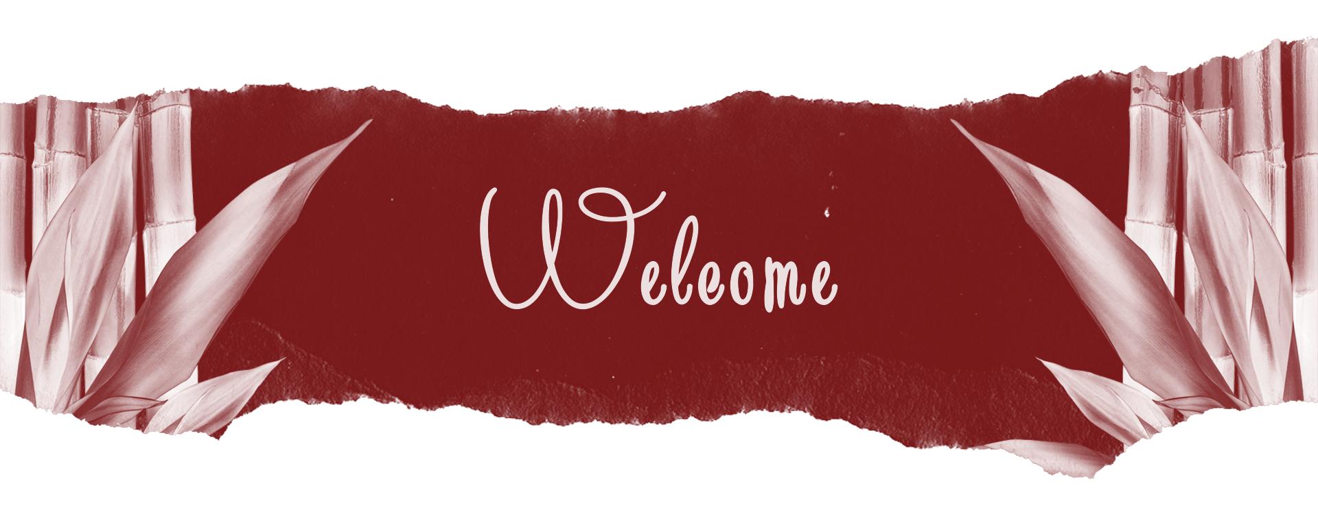 Bine ati venit