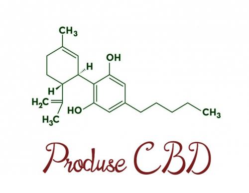 Produse CBD