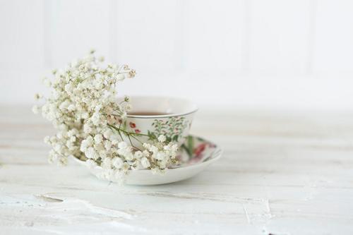 ceai-alb-proprietati