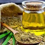 Planta de cannabis – medicament universal