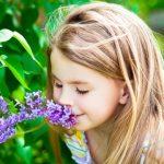 Cum să spunem STOP alergiei sezoniere