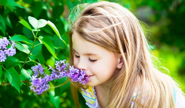 aroma-naturii