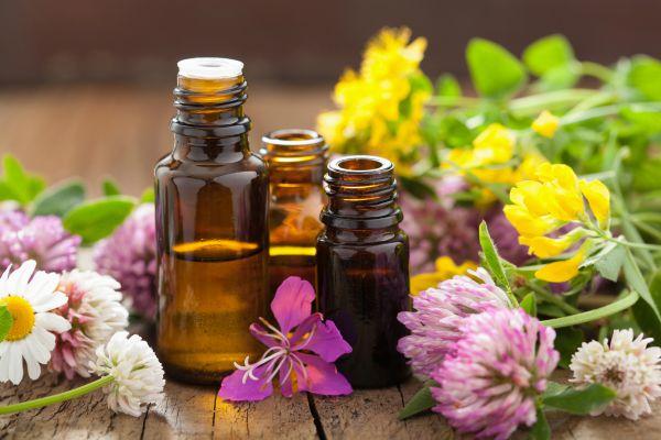 uleiuri-plante-beneficii