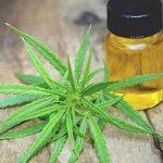 La ce ajută uleiul de canabis?