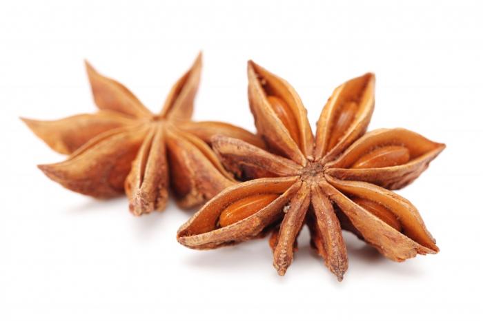 Ulei Esential Anason seminţe, Aniseed 15ml [1]
