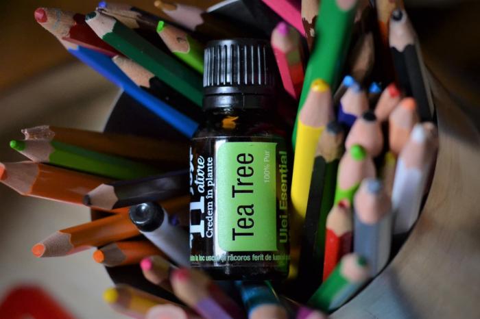 Ulei Esential Arbore de Ceai, Tea Tree 15ml [2]