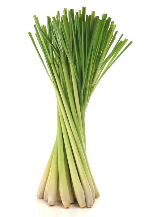 Ulei Esential Iarbă de lămâie, Lemongrass 15ml [1]